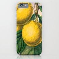 Yellow Plums iPhone 6 Slim Case