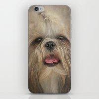Shih Tzu iPhone & iPod Skin
