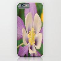 Pretty in Purple  iPhone 6 Slim Case
