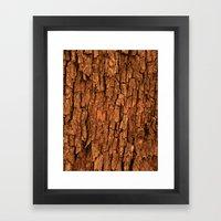 Bark (1) Framed Art Print