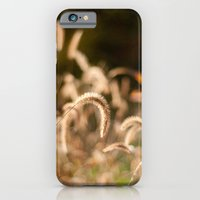 Autumn Light iPhone 6 Slim Case