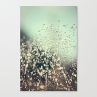 Water Jewels Canvas Print