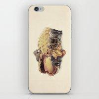 Elephant's Paradise iPhone & iPod Skin