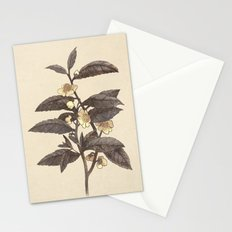 Late Bloom  Stationery Cards