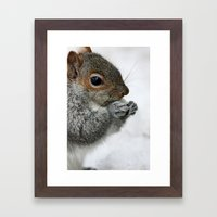 Snow Squirrel Framed Art Print