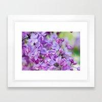 Lilac, Nature Photography, Blossom Print, Purple Wall Art, Spring Blossom Photo, Feminine Framed Art Print
