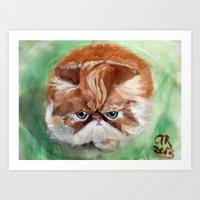 Grumpy Persian Art Print
