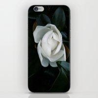 Becoming iPhone & iPod Skin