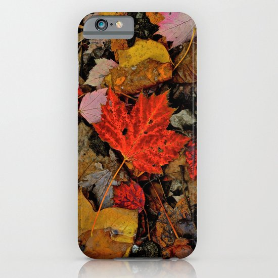 Nature's Palette iPhone & iPod Case