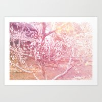 桜, さくら Art Print