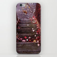 Autumn Stairs iPhone & iPod Skin