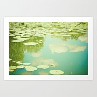 Summer Reflections Art Print