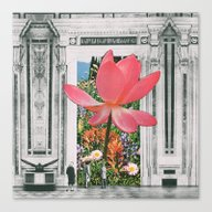 The Magical Lotus Flower Canvas Print