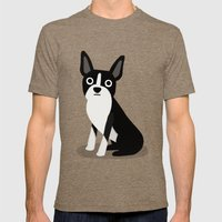 Boston Terrier - Cute Do… Mens Fitted Tee Tri-Coffee SMALL
