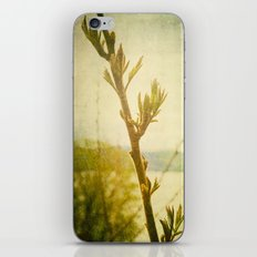 Primavera iPhone & iPod Skin