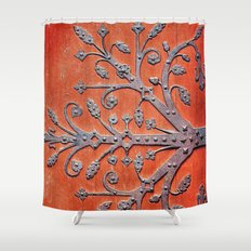 Gothic Red Door Shower Curtain