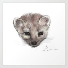 Pine Marten Art Print