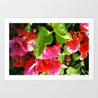 Vibrant Pink And Red Flo… Art Print