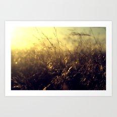 Golden Hour Art Print