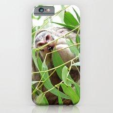 Koala iPhone 6s Slim Case