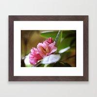 Pretty in Pink4 Framed Art Print