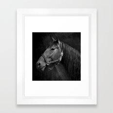 HORSE - SCHWARZ/WEISS Framed Art Print