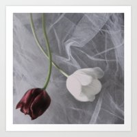 Tulips And Lace Art Print