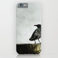 Crow At Sea iPhone 6 Slim Case