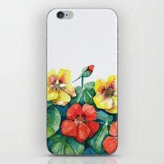Nasturtium iPhone & iPod Skin