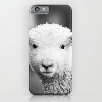iPhone & iPod Case featuring Lamb in Black and White by Erin Johnson