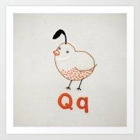 Q Quail Art Print