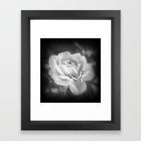 Butterfly Rose. Framed Art Print