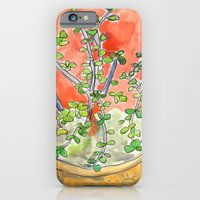 iPhone & iPod Case featuring Succulents by Meirav Gebler