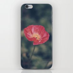 Poppy (2) iPhone & iPod Skin