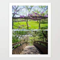 Bridges And Branches Art Print