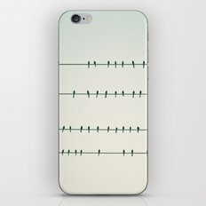 Birds on Four Wires  iPhone & iPod Skin