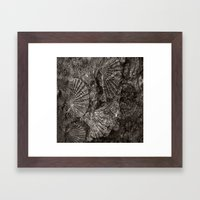 The Mystery Of The Fossi… Framed Art Print