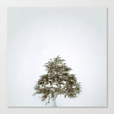 Tree #03 Canvas Print