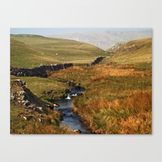 Scaleber Beck Canvas Print