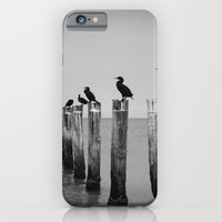 Black and White birds on a post photography iPhone 6 Slim Case