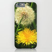 iPhone & iPod Case featuring Taraxacum Officinale by Steve Watson