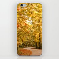 Just Around the Curve iPhone & iPod Skin