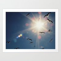 fly into the sun Art Print