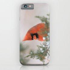 Portrait Of A Male Cardi… iPhone 6 Slim Case