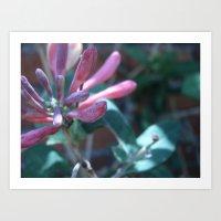 Flowers #12 Art Print