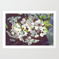 need some spring right now  Art Print
