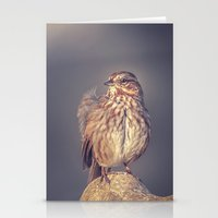 Song Sparrow Stationery Cards