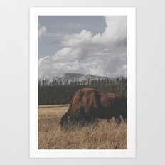 Wyoming XXXVIV Art Print