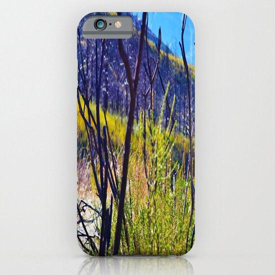 Through the Shrubs iPhone & iPod Case