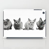 Four Gorgeous Cats Sitting In A Row iPad Case